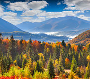 Colorful autumn landscape in mountains Stock Photo