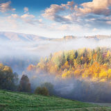 Colorful autumn landscape in the mountains. Stock Images