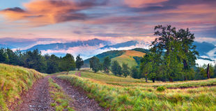Colorful autumn landscape in mountains. Royalty Free Stock Photos