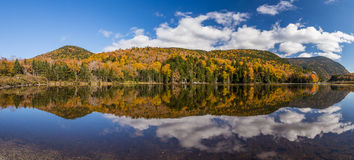 Colorful Autumn landscape and reflection in White mountain Natio Stock Images