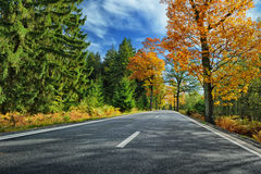 Colorful autumn landscape with road Royalty Free Stock Image