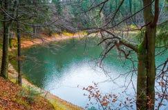Colorful autumn landscape on Synevir lake, Ukraine. Stock Photos