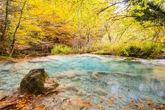 Colorful autumn landscape at urederra source, Spain. Colorful autumnal scene at clear natural spring of urederra Stock Photos