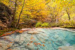 Colorful autumn landscape at urederra source, Spain. Colorful autumnal scene at clear natural spring of urederra Royalty Free Stock Image
