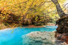 Colorful autumn landscape at urederra source, Spain. Colorful autumnal scene at clear natural spring of urederra Royalty Free Stock Photography