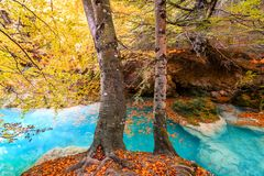 Colorful autumn landscape at urederra source, Spain. Colorful autumnal scene at clear natural spring of urederra Royalty Free Stock Photos