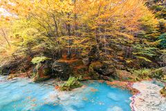 Colorful autumn landscape at urederra source, Spain. Colorful autumnal scene at clear natural spring of urederra Royalty Free Stock Photo
