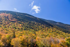 Colorful Autumn landscape in White mountain National forest, New  Hampshire Royalty Free Stock Photos