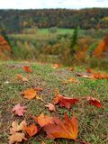 October. Colorful autumn in Latvia stock image