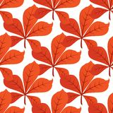 Colorful autumn leaf background seamless pattern. Colorful autumn or fall leaf background seamless pattern with an overlapping repeat motif on white, in square royalty free illustration
