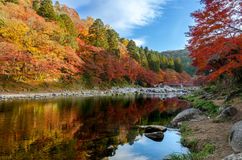 Colorful Autumn Leaf and River with blue sky Stock Photography