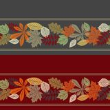 Colorful autumn leaf seamless pattern. Autumn leaf seamless pattern with borders. 2 variants Stock Photography