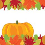 Autumn leafs. Colorful autumn leafs, pumpkin and roses vector illustration