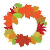 Autumn leafs. Colorful autumn leafs, season nature royalty free illustration