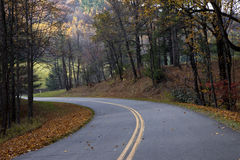 Colorful autumn leaves along a country road Stock Photos
