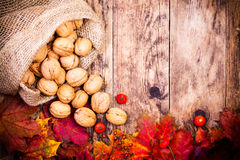 Colorful Autumn Leaves And Wood Background. Royalty Free Stock Images