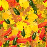 Colorful autumn leaves and leaves as a seamless pattern stock images