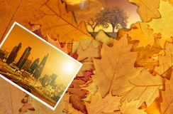 Colorful autumn leaves background, London Royalty Free Stock Image