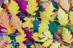 Colorful Autumn leaves background,  oil painting efect Royalty Free Stock Photography