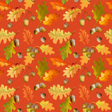 Colorful Autumn Leaves Background - Seamless Pattern Royalty Free Stock Image
