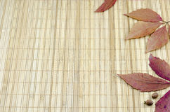 Colorful autumn leaves on a bamboo tablecloth Stock Images