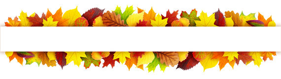 Colorful autumn leaves banner Royalty Free Stock Photo