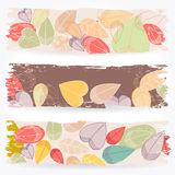 Colorful autumn leaves banners. Vector set of colorful, hand drawn style retro, grunge autumn leaves banners illustration Stock Photo
