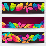Colorful autumn leaves banners Royalty Free Stock Image