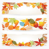 Colorful autumn leaves banners. Vector set of colorful, hand drawn style retro, grunge autumn leaves banners illustration Royalty Free Stock Images