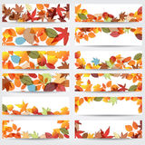 Colorful autumn leaves banners Stock Image