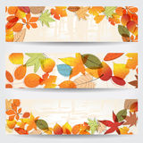 Colorful autumn leaves banners Stock Photos