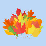Colorful autumn leaves on blue background. Flat style vector illustration Stock Images