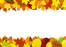 Colorful autumn leaves border Stock Image