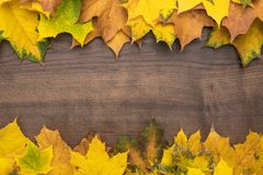 Yellow leaves background. Colorful autumn leaves on brown table. fall season concept background royalty free stock photos