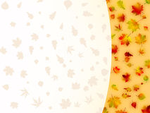 Colorful autumn leaves card. EPS 8 Royalty Free Stock Images