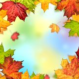 Colorful autumn leaves frame. Colorful background autumn leaves frame Stock Photo