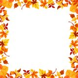 Vector colorful autumn leaves frame. Stock Images