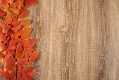 Colorful autumn leaves frame on wooden background Royalty Free Stock Photos