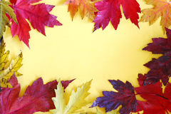 Colorful Autumn Leaves Frame on Yellow Background Royalty Free Stock Photo
