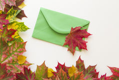 Colorful autumn leaves and green envelop on white background. Close up. Royalty Free Stock Images