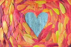 Colorful autumn leaves in a heart shape Royalty Free Stock Photography