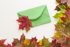 Colorful autumn leaves and open envelop on white background. Close up. Royalty Free Stock Photography