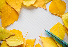 Colorful autumn leaves and pen Autumn composition. Free space for text. Stock Photo