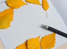 Colorful autumn leaves and pen Autumn composition. Free space for text. Stock Photos