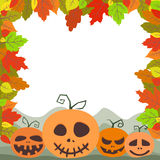Colorful autumn leaves and pumpkins. Frame for your design. Royalty Free Stock Images