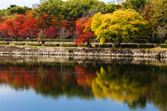 Colorful autumn leaves reflecting on the water Royalty Free Stock Images