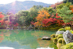 Colorful of autumn leaves with reflection in pond at Tenryo-ji T. Emple , Arashiyama, Kyoto, Japan Royalty Free Stock Images
