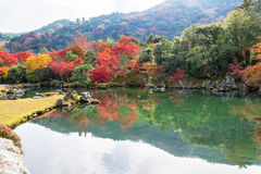 Colorful of autumn leaves with reflection in pond. At Tenryo-ji Temple , Arashiyama, Kyoto, Japan Royalty Free Stock Image