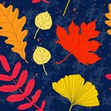 Colorful autumn leaves seamless pattern. Background with different leaves in autumn colors vector illustration