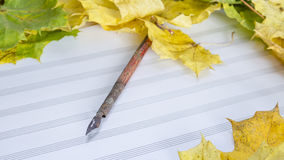 Colorful autumn leaves and sheets of paper Royalty Free Stock Images
